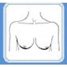 А какая грудь нравится вам?
