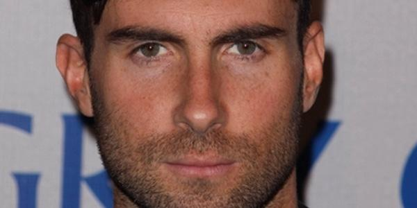 Adam Levine is single once again